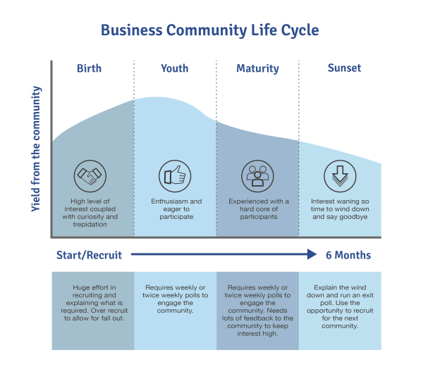 The business community life-cycle