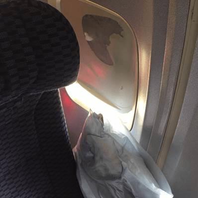 united-flight-pillow
