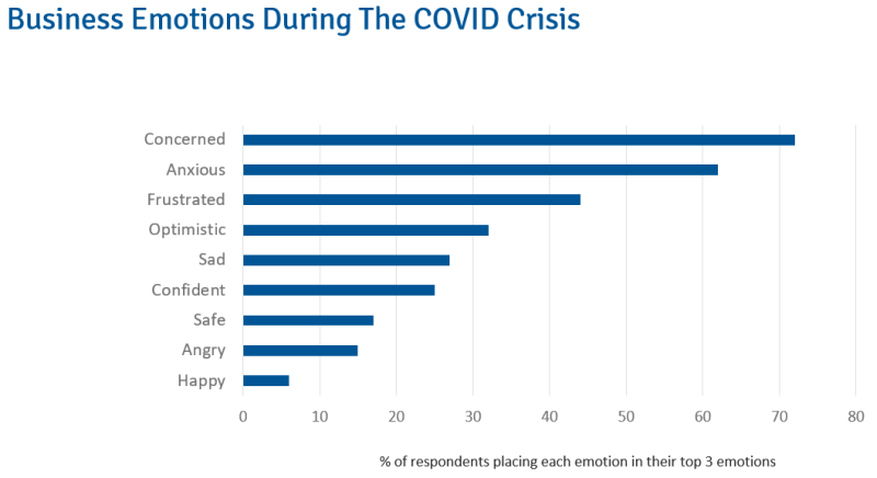 Business Emotions During The COVID-19 Crisis